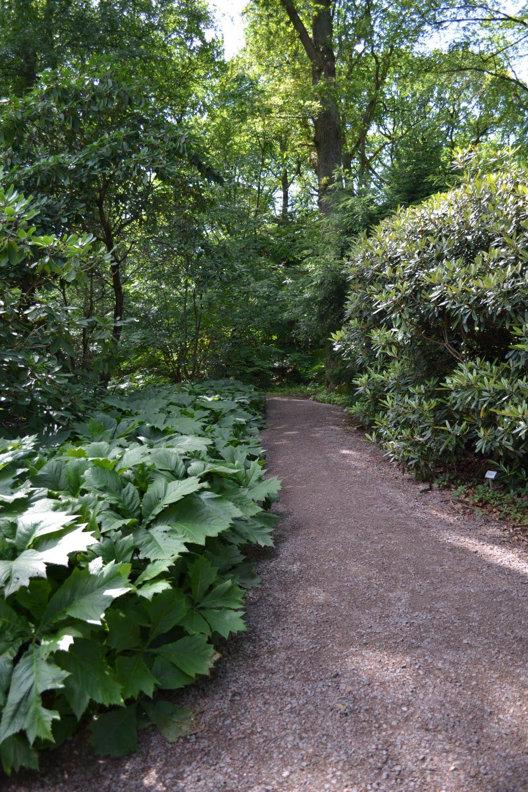 Blomsterbo: botaniska trädgården och lite inköp