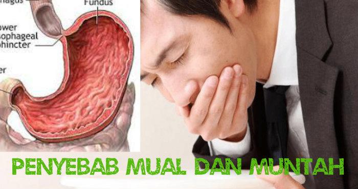 Penyebab Mual dan Muntah Muntah