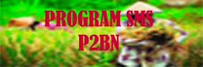 SMS P2BN