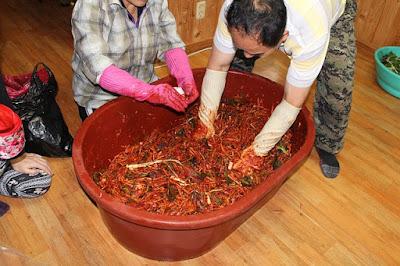 Proses pembuatan kimchi di Korea