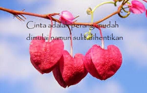 kata kata bijak cinta penuh makna kasih sayang