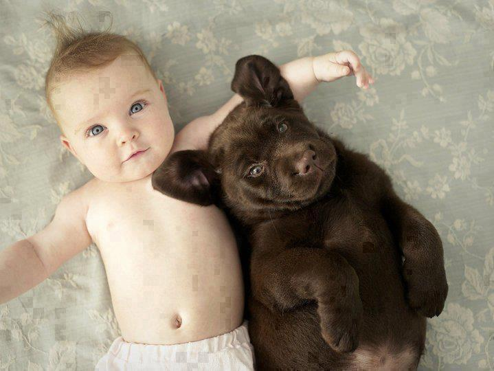 Black puppy sleeping with little baby