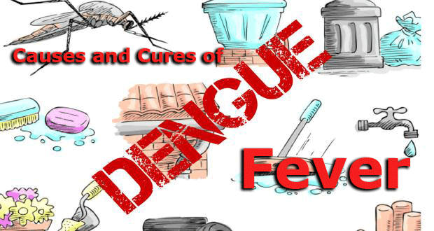 All About Dengue Fever Causes and Cures
