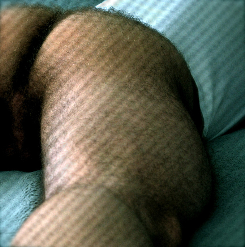 hairy asses