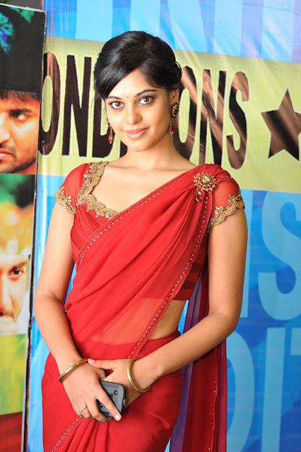 Bindu Madhavi In Full Saree 5
