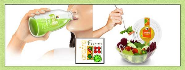 Produsen Terbaik Salad Sayur dan Jus Sayuran Hidroponik untuk Diet dan Kesehatan