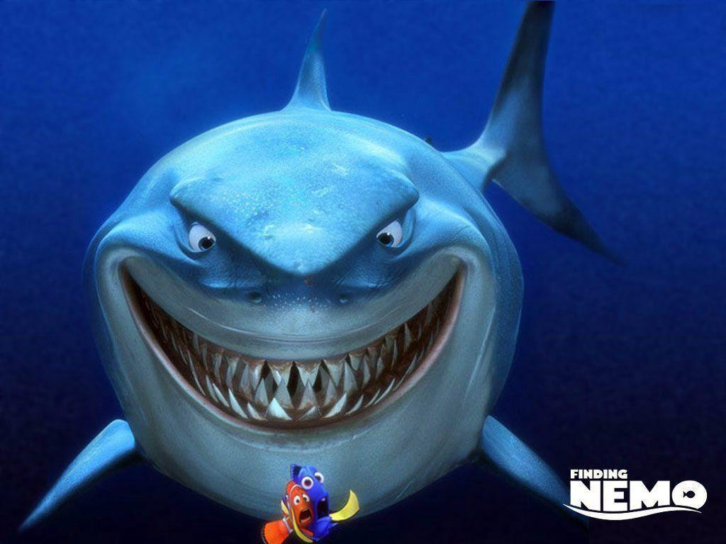 get shark wallpaper - photo #46