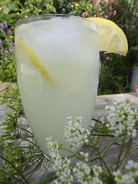 Lemoniada na upały z kwitnącego czarnego bzu
