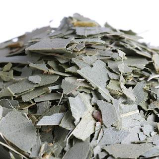 eucalyptus pour vaporisateur