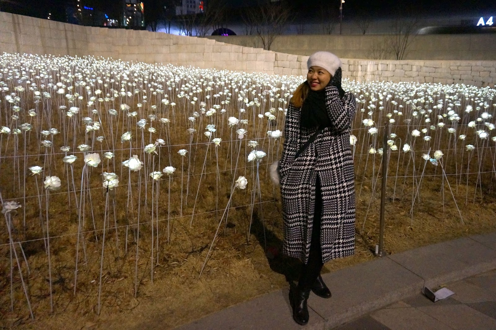 Walk with Cham: LED Rose Garden Dongdaemun Design Plaza Seoul South ...