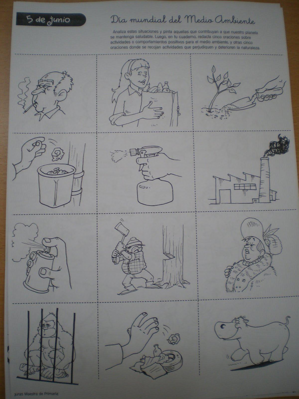 Observar las diferentes viñetas, colorear las situaciones que hacen