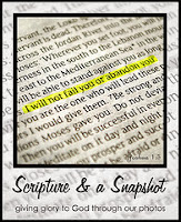 http://www.glimpseofourlife.com/2015/06/scripture-and-snapshot_20.html