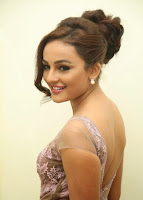 Seerath Kapoor looks absoilutely Cute and Stunning in Transparent Long Net Dress at Tiger Audio Launch