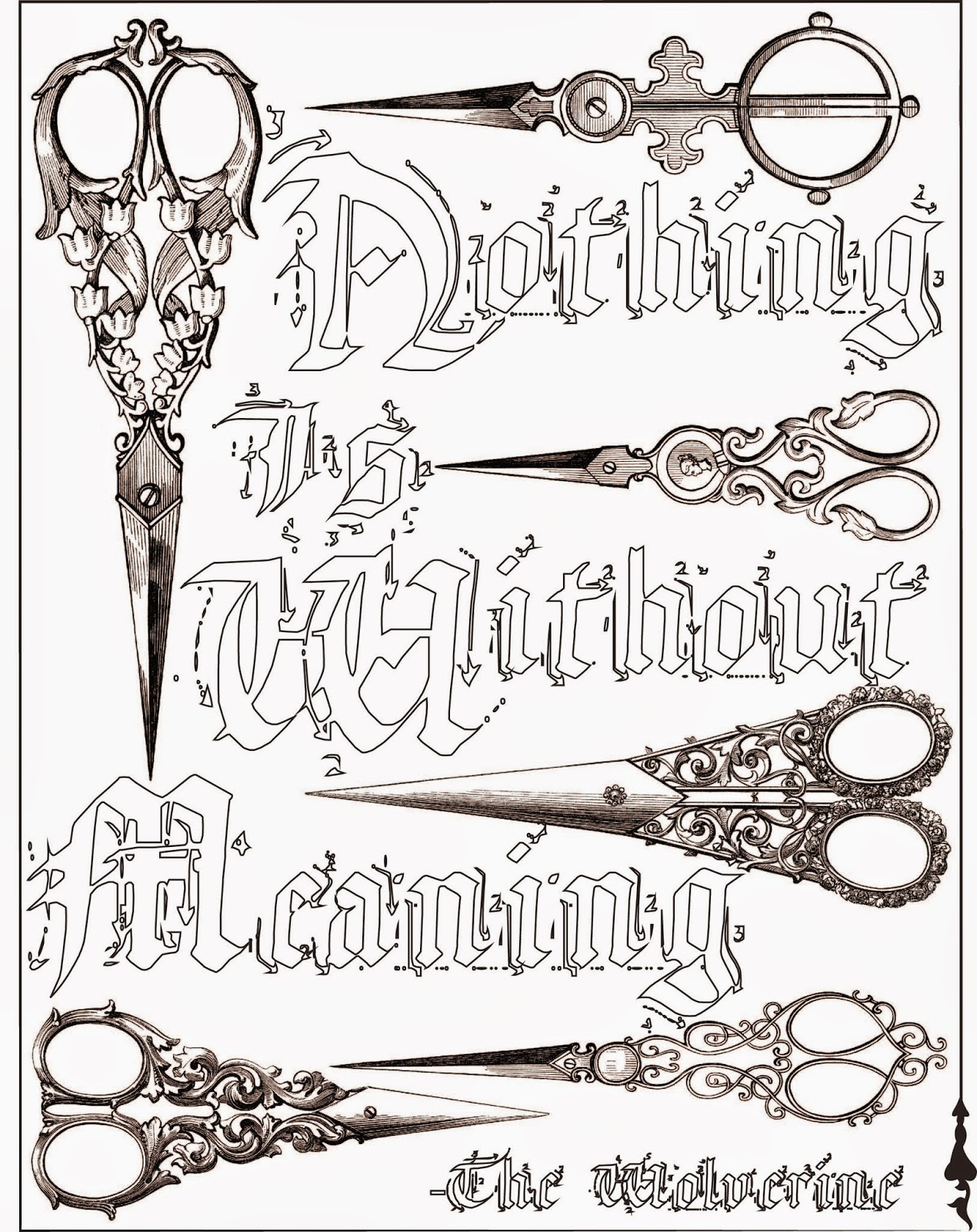 Nothing is without meaning, quote, adult coloring page, stefanie girard, scissors, art