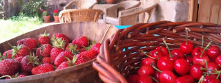 cesta productos ecologicos