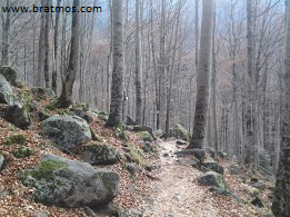 Gornie-tropi-Bolgarii