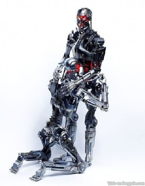 kamasutra robots 03 Ternyata Robot terminator Juga Bisa Melakukan ML, FULL FOTO