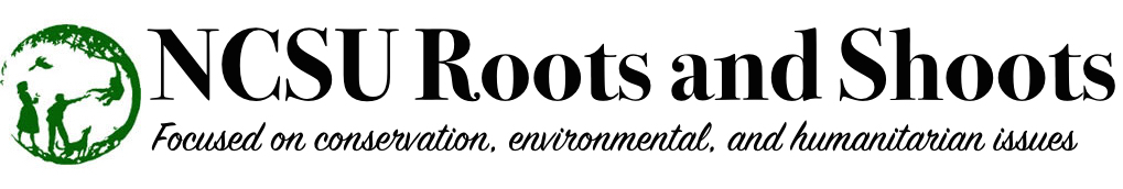 NCSU Roots and Shoots