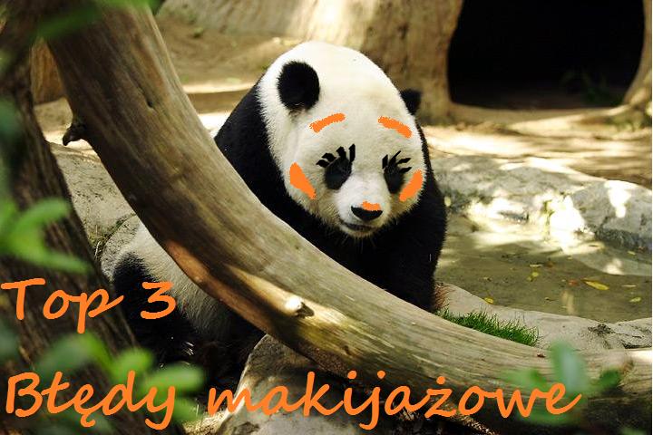 zdjęcie z https://commons.wikimedia.org/wiki/File%3ALightmatter_panda.jpg