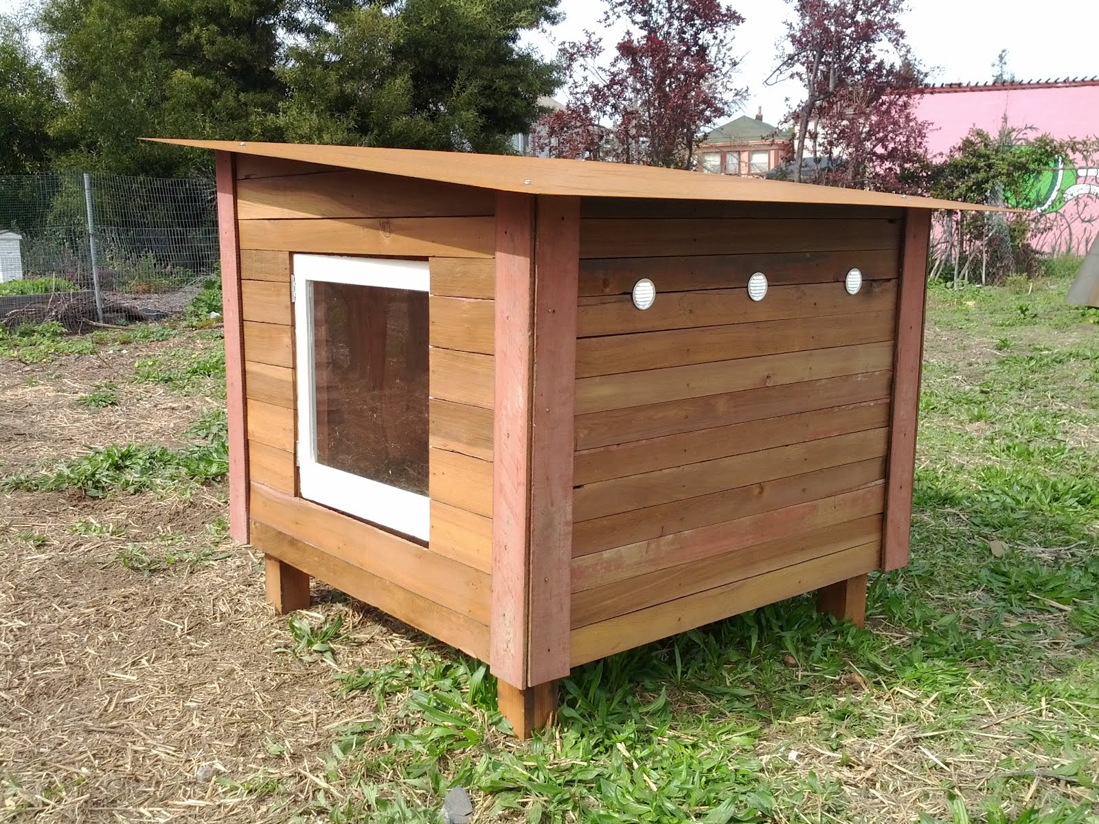 Just fine design build 2 new chicken coops on display and for Basic chicken coop