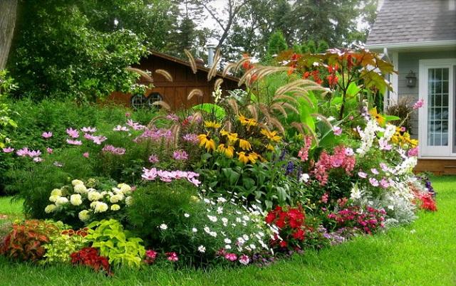 Warna-warni Bunga di Taman