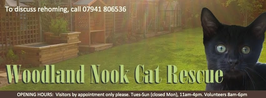 Woodland Nook Cat Rescue