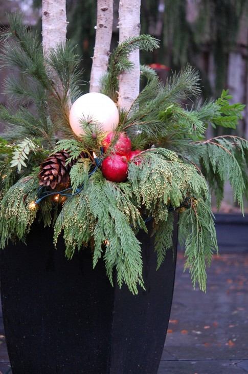 Decorating Ideas > December 2011 ~ Limefreckle ~ 085848_Christmas Decorating Ideas For Outdoor Planters