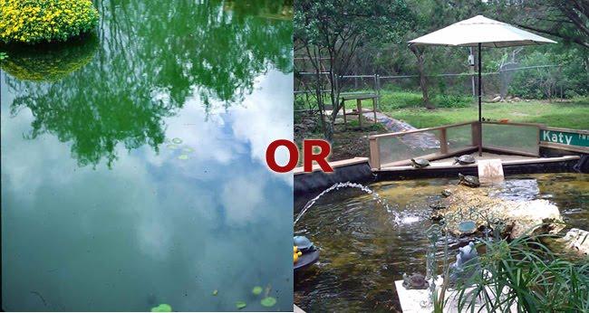 Green Pond Water Uv Clarifier