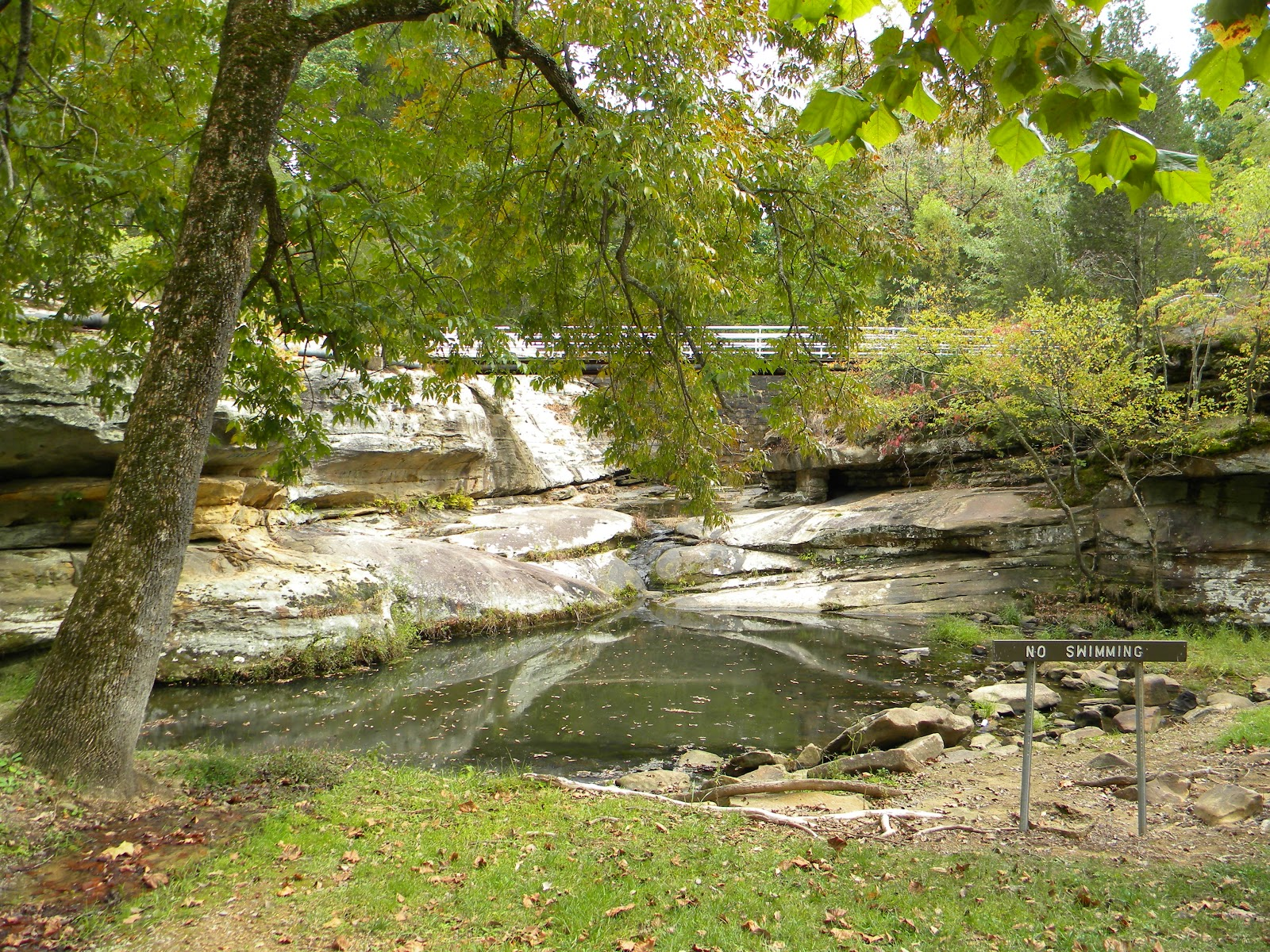 dixon springs Search dixon springs, tennessee real estate listings & new homes for sale in dixon springs, tn find dixon springs houses, townhouses, condos, & properties for sale at weichertcom.