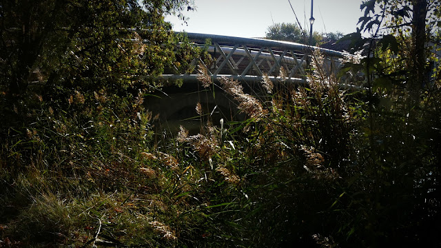 Puente de Pitágoras (del otro lado), 2012 (cc) Abbé Nozal
