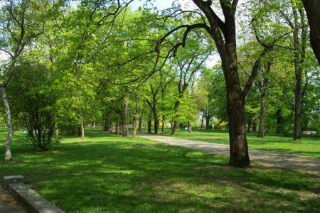 El medio ambiente - Página 2 Medio-ambiente-anuncia-campana-en-defensa-de-areas-verdes