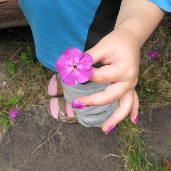 цветы, floral nails