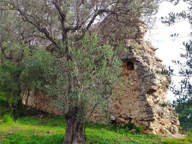 Muralla. Castell del Rebollet