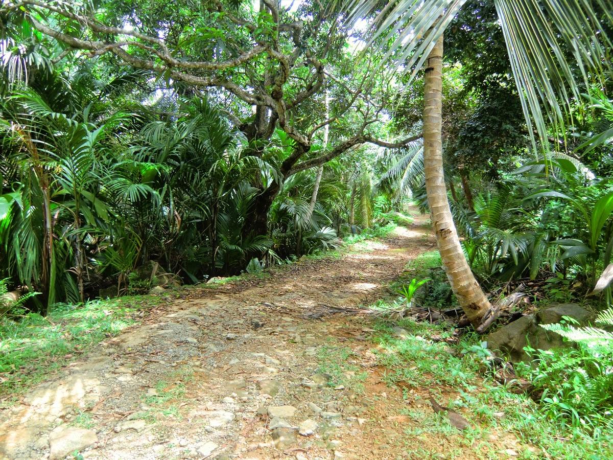 Seycheli-Siluet
