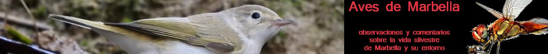 Aves de Marbella