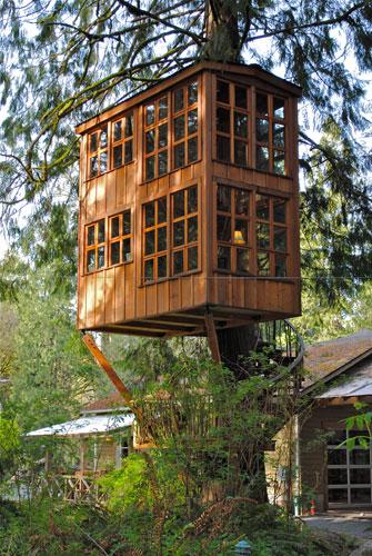 Treehouse In Washington 1
