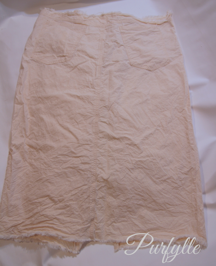 skirt toile back