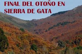 OTOÑO CREPUSCULAR EN LA SIERRA DE GATA