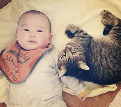 foto kucing bernama toco dan seorang bayi 06