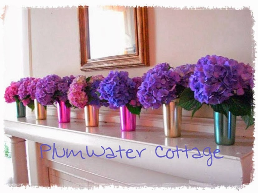 PlumWater Cottage