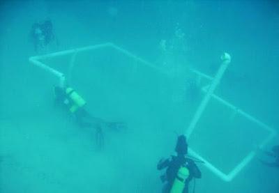 بالصور بناء أول مسجد كامل تحت الماء 4
