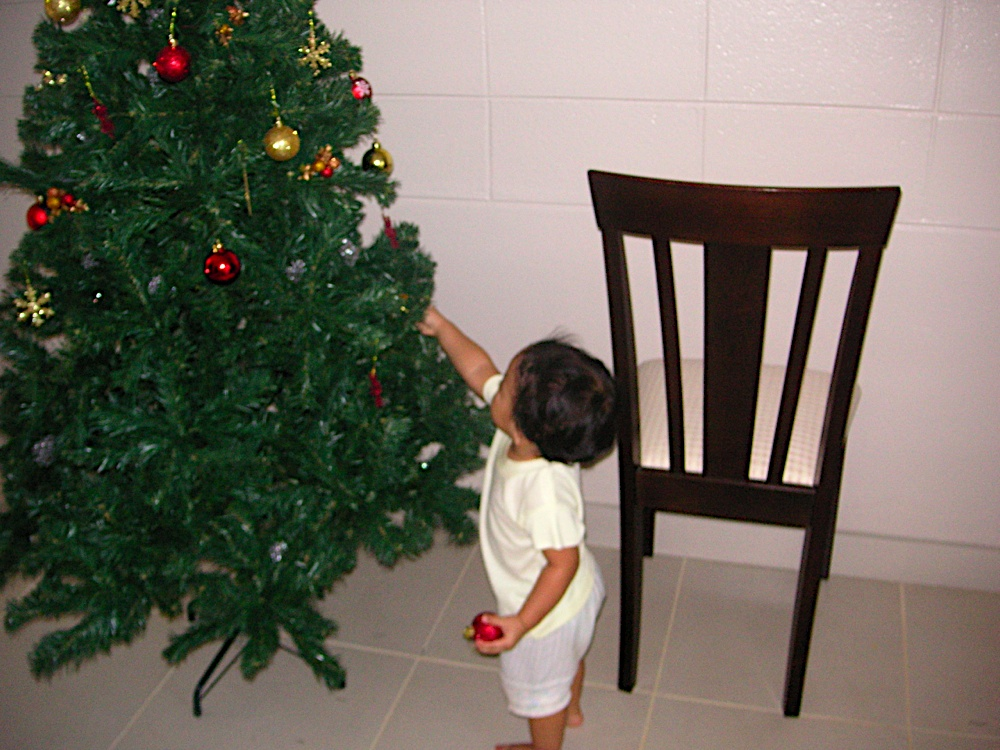 Little Kecil hanging decor on the tree