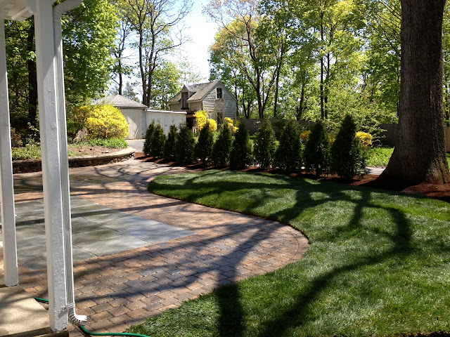Shrub Planting Services Melrose MA