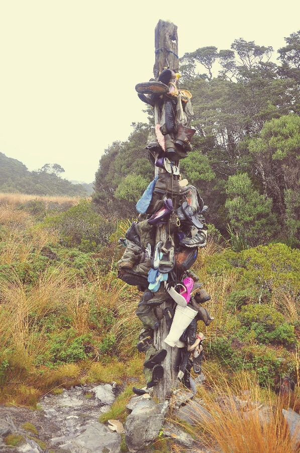 making footprints...: Heaphy track pictures continued :-)