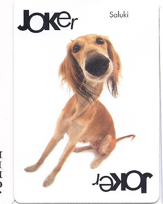 doggy joker