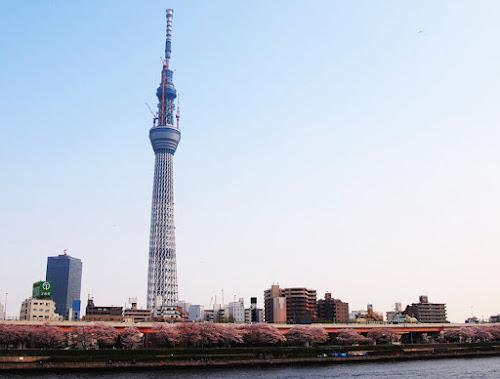 Tokyo Sky Tree - Maior torre do mundo
