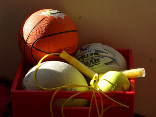 Picture of athletic equipment - Sports romance novels