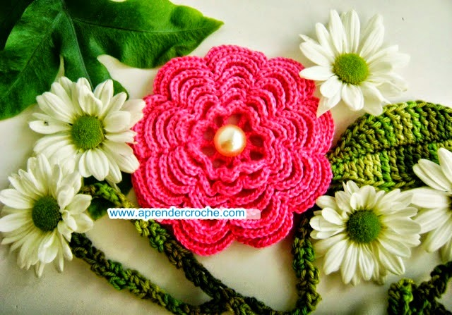 aprender croche flores camelias rosa branco edinir-croche dvd curso de croche loja frete gratis