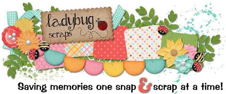 Ladybug Pics n Scraps