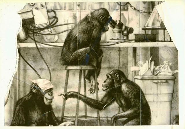Monkeys playing in a laboratory illustrated by Michael Gellatly